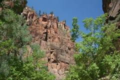 zion Юты национального парка Стоковые Фотографии RF