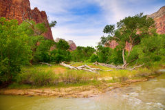 Zion. Beautiful view of the Virgin River in Zion National Park Royalty Free Stock Images