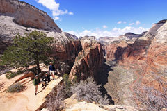 Zion Angels Landing Hikers Stock Photography