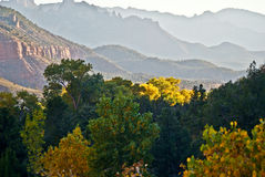 Zion Autumn. Mountains vanish into the distance beyond fall foliage in Zion National Park stock photography