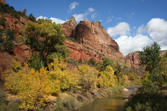 Zion Autumn Royalty Free Stock Images