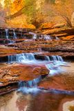 Zion meets fall royalty free stock photo