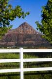 Zion Butte från den Apple dalen Arkivbilder