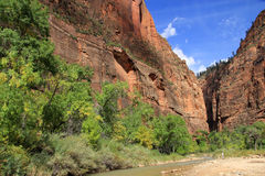 Free Zion Canyon Royalty Free Stock Images - 80460579