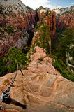 Zion Canyon as seen from Angels Landing at Zion National Park Royalty Free Stock Image