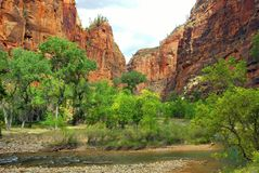 Zion Canyon Cliffs, Zion Royalty Free Stock Photo