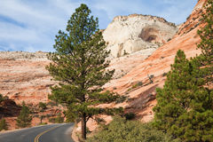 Zion Canyon Landscape Royalty Free Stock Photo