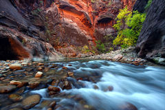 Zion Canyon Narrows. Virgin River cascades in the The Narrows of Zion Canyon - southwest Utah Stock Images