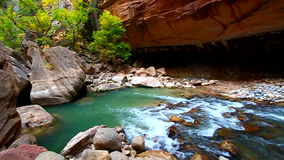 Zion Canyon Narrows Utah arkivfilmer