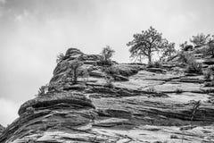 Zion Canyon National Park Utah Stock Photography