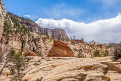 Zion Canyon National Utah Royalty Free Stock Photography