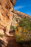 Zion Canyon Overlook Trail Stock Image