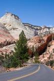 zion Canyon Road Стоковая Фотография RF