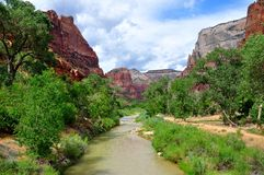 Zion Canyon, with the virgin river royalty free stock images