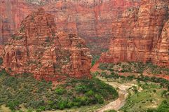 Zion Canyon and  the virgin river Royalty Free Stock Photo