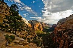 Zion Canyon zoals die van Engelen wordt gezien die in Zion National Park landen Stock Afbeeldingen