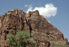 Zion Cliffs Royalty Free Stock Image