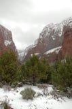 Zion dans la neige Images stock