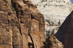 zion de rouge de falaises Photo stock