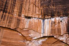 zion de rouge de falaises Photos libres de droits