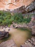 zion för upper för smaragdnationalparkpöl Arkivbild