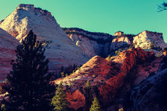 Zion Royalty Free Stock Photo