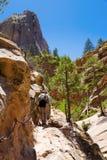 zion hikers Стоковое Изображение RF