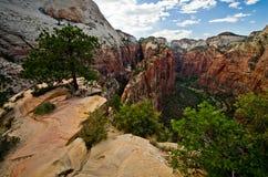Zion jar jak widzieć od aniołów Ląduje przy Zion parkiem narodowym Obrazy Stock