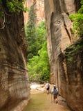 Zion Jungfrau verengt Wanderer Lizenzfreie Stockbilder