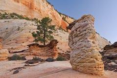 Zion Landscape Stock Images