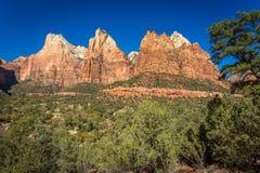 Zion Landscapes royaltyfri fotografi
