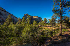 Zion Landscapes Royalty Free Stock Photo