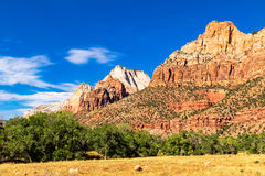 Zion Mountains. Zion National Park mountains and trees stock photography
