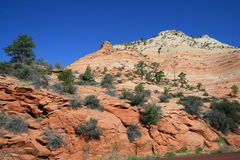 Zion Mt Carmel Highway Royalty Free Stock Image