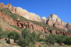 Zion Mt Carmel Highway royalty free stock photography