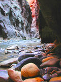 Zion Narrows. Zion National Park Narrows Portrait Royalty Free Stock Image