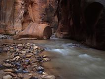 Zion Narrows 16 Stock Images