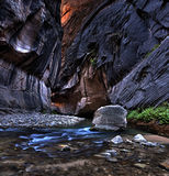 Zion narrows. Stock Images