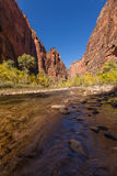 Zion Narrows in Autumn Royalty Free Stock Images