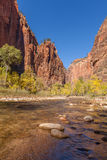 Zion Narrows in Fall Stock Photo