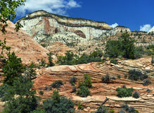 Zion National Par Photo stock