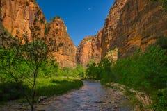 Zion National Park Imagem de Stock