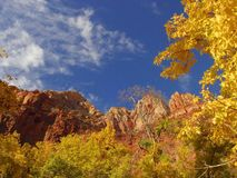 Zion National Park 14 Royalty Free Stock Photography