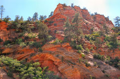 Zion National Park. Mountain view Royalty Free Stock Photos