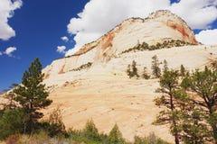 Zion National Park Stockbilder