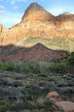 Zion National Park fotografía de archivo libre de regalías