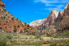 Zion National Park Foto de archivo