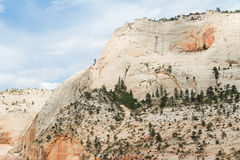 Zion National Park Photos stock