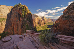Zion national park. Red mountains with blue sky and white clouds Stock Photography