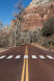 Zion National Park Immagine Stock Libera da Diritti